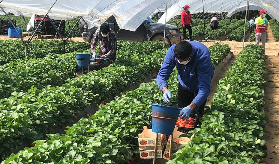 """Crespo destaca que """"la agroindustria, la ganadería y la pesca son ..."""