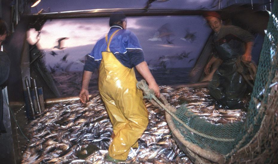 Un barco de pesca durante las labores de descarga del pescado apresado (Foto Junta de Andalucía)