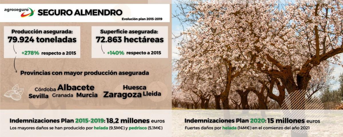 Infografu00eda Almendro